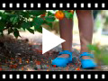 Video from Scarpe Ballerine cinturino Bambina Tela Fibbia
